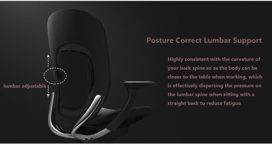 Ergonomic Chair lumbar support
